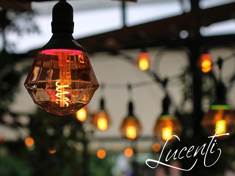 Damos la bienvenida a Lucenti